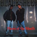 Black Sheep / Flavor Of The Month