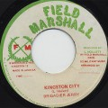 Brigadier Jerry / Kingston City c/w The Militants / Nice And Pretty