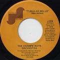 Champs' Boys Orchestra / Fleur c/w Tubular Bells
