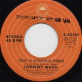 Johnny Nash / (What A)Wonderful World c/w Rock It Baby