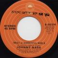 Johnny Nash / (What A)Wonderful World c/w Rock It Baby