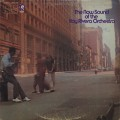 Ray Rivera Orchestra / The Now Sound Of The Ray Rivera Orchestra