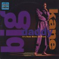 Big Daddy Kane / It's Hard Being The Kane