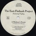 East Flatbush Project / A Madman's Dream