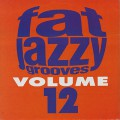 V.A / Fat Jazzy Grooves Volume12