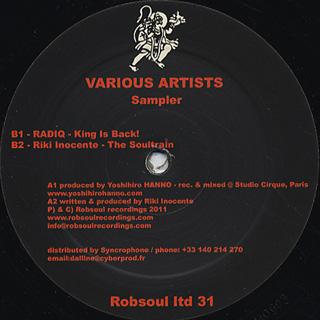 V.A. / Robspul Ltd Sampler 31