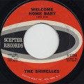 Shirelles / Welcome Home Baby
