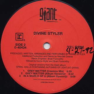 Divine Styler / Grey Matter back