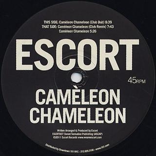Escort / Cameleon Chameleon back
