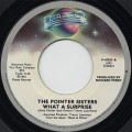 Pointer Sisters / What A Surprise
