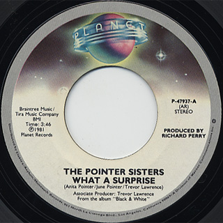 Pointer Sisters / What A Surprise front