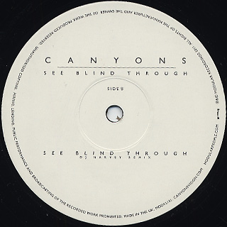 Canyons / See Blind Through back