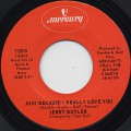 Jerry Butler / Just Because I Really Love You c/w Only The Strong Survive