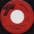 Syl Johnson / Is It Because I'm Black