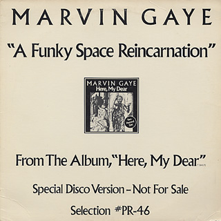 Marvin Gaye / A Funky Space Reincarnation