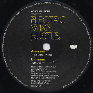 Electric Wire Hustle / They Don't Want