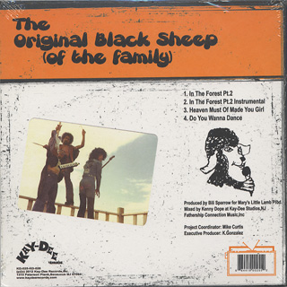 Original Black Sheep (Of The Family) / In The Forest Pt.2 Kenny Dope Mixes & Edits back