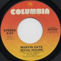 Marvin Gaye / Sexual Healing