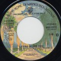 Eugene Record / Laying Beside You c/w (Mono)