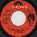 James Brown / I Got Ants In My Pants