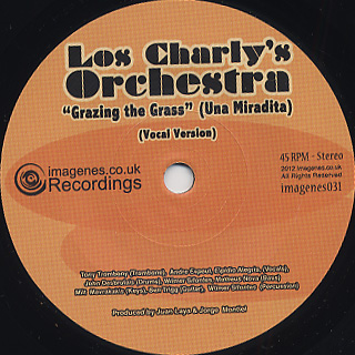 Los Charly's Orchestra / Grazing The Grass(Una Miradita) back