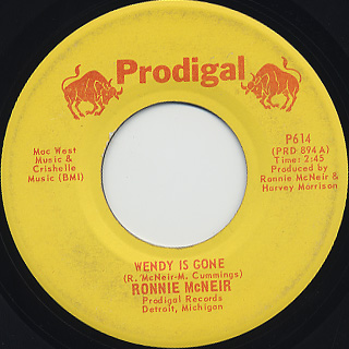 Ronnie Mcneir / Wendy Is Gone
