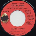 Black Grass / Going Down To The River