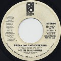 Dee Dee Sharp Gamble / Breaking And Entering
