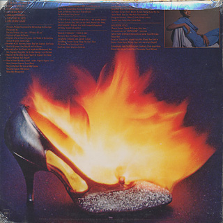 Ronnie Dyson / If The Shoe Fits back