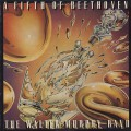 Walter Murphy Band / Fifth Of Beethoven