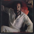Jerry Butler / Nothing Says I Love You Like I Love You