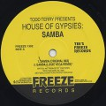 Todd Terry / Samba (MK / Louie Vega Remixes)