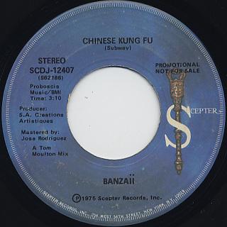 Banzaii / Chinese Kung Fu