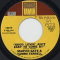 Marvin Gaye & Tammi Terrell / Good Lovin' Ain't Easy To Come By