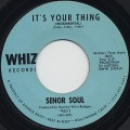 Senor Soul / It's Your Thing