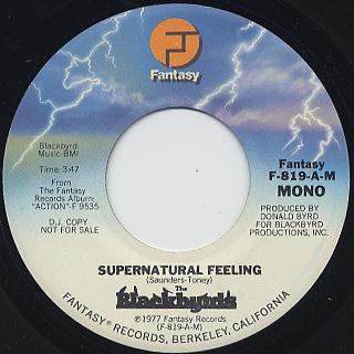 Blackbyrd / Supernatural Feeling back
