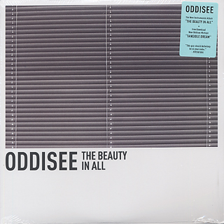 Oddisee / The Beauty In All