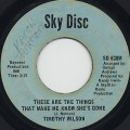 Timothy Wilson / These Are The Things That Make me Know She's Gone