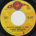 Curtis Mayfield / Beautiful Brother Of Mine
