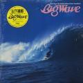 O.S.T.(Tatsuro Yamashita) / Big Wave