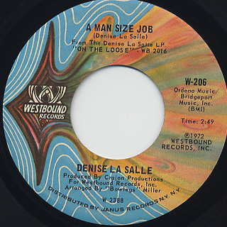 Denise LaSalle / A Man Size Job