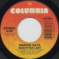 Marvin Gaye / Sanctified Lady