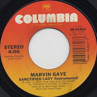 Marvin Gaye / Sanctified Lady back