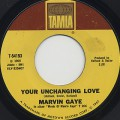 Marvin Gaye / Your Unchanging Love