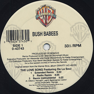 Bush Babees / The Love Song (The Remix) back