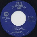 Lee Fields And Sugarman & Co. / Shot Down c/w Honey Wagon