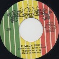 Ziggy Marley & Melody Makers / Tumblin' Down
