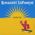 Buckshot Lefonque / Another Day