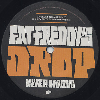 Fat Freddy's Drop / Mother Mother / Never Moving (Remixes) back
