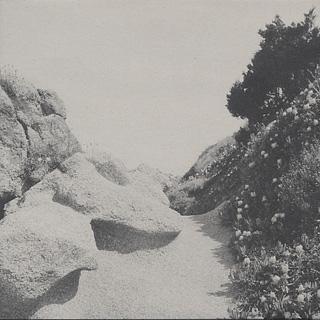 Tilman / Mild Western EP